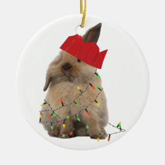 Hoppy Christmas Bunny Decoration Round Ceramic Decoration
