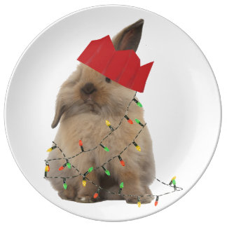 Hoppy Christmas Bunny Plate