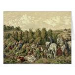 Hops Harvest 1857 Greeting Card