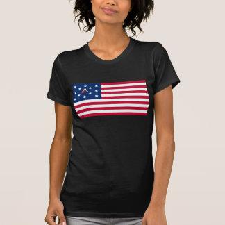 Hopskinson American Flag T-shirts
