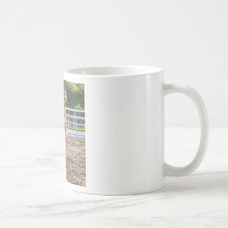 Horese in a playful mood basic white mug