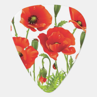 Horizontal border with red poppy guitar pick