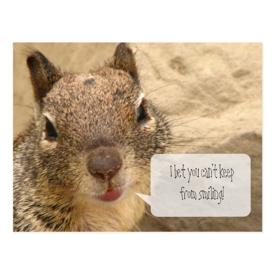 Horizontal Postcard - Smiling Squirell