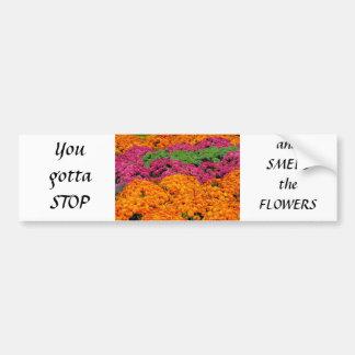 Horizontal template bumper sticker