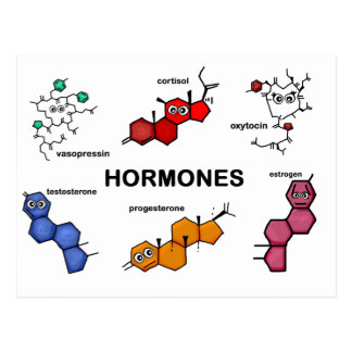 Hormones Postcard