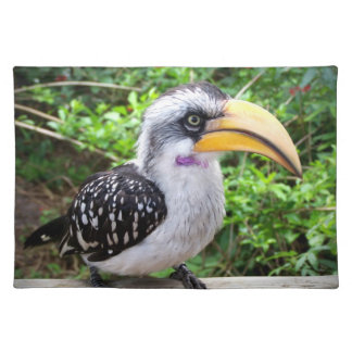 Hornbill bird close up looking at camera placemat