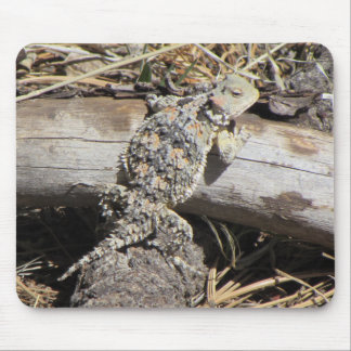 Horned Lizard Mouse Mat