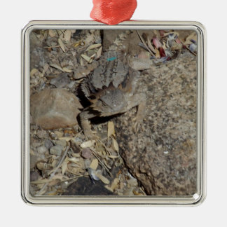 Horned Lizard Silver-Colored Square Decoration