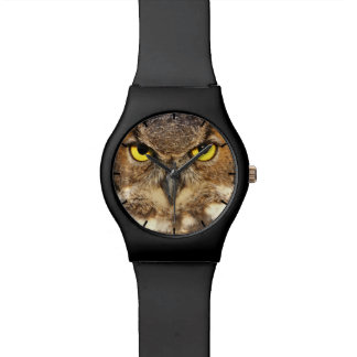 Horned Owl Face May28th Watch