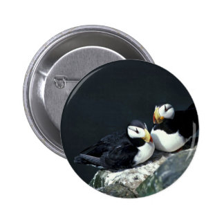 Horned Puffin pair Button
