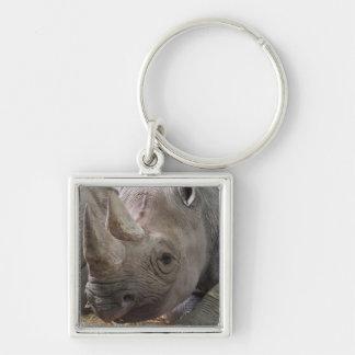 Horned Rhino  Keychain
