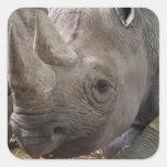 Horned Rhino  Sticker