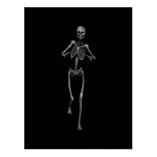 Horror Skeleton 1 Postcard