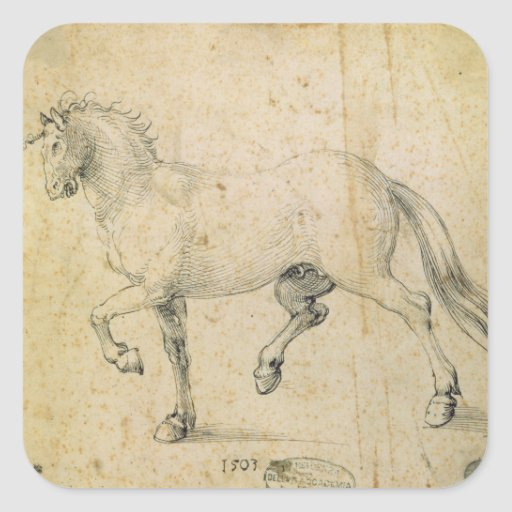 Horse, 1503 (pen and ink on paper) stickers