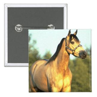 Horse 15 Cm Square Badge