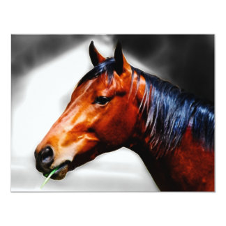 Horse and a blade of grass 11 cm x 14 cm invitation card