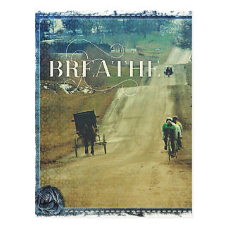 Horse and Buggy and Bicycles Postcard