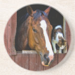 Horse and Cat Coasters