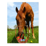 Horse and Easter Basket Postcard