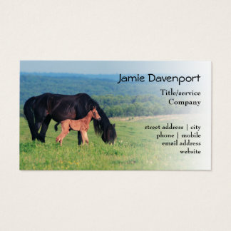 Horse and Foal on a meadow Business Card