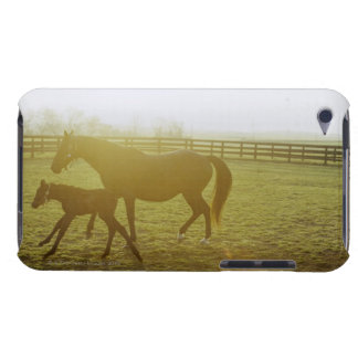 Horse and foal running in pasture barely there iPod cover