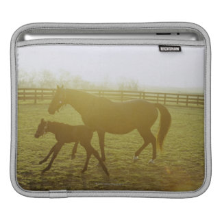 Horse and foal running in pasture iPad sleeve