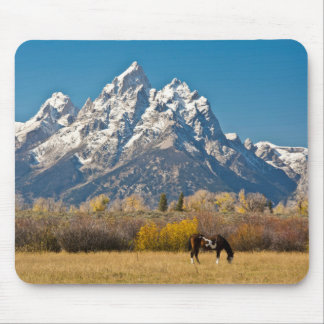Horse and Grand Tetons, Moose Head Ranch Mouse Pad