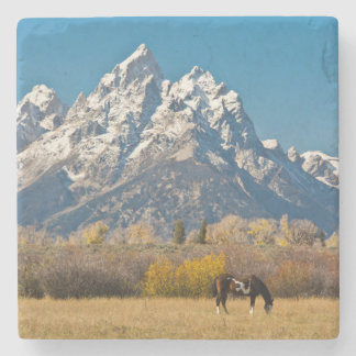 Horse and Grand Tetons, Moose Head Ranch Stone Coaster