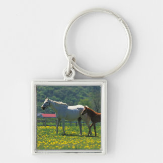 Horse and her foal standing in a field key ring