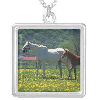 Horse and her foal standing in a field silver plated necklace