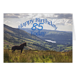 Horse and landscape 85th birthday card