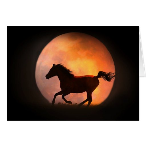 Horse and Moon Birthday Greeting Greeting Cards
