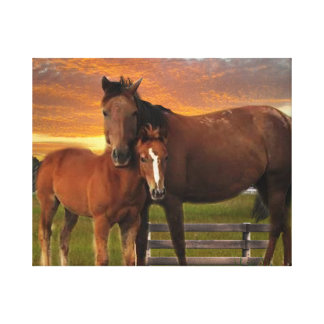 Horse and pony canvas print