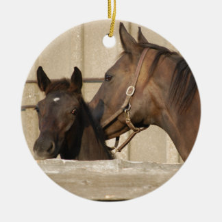 Horse and Pony Christmas Ornament