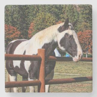 HORSE AND RAIL FENCE STONE COASTER