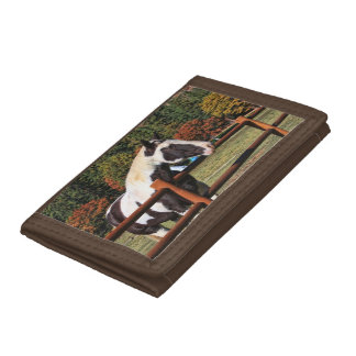 HORSE AND RAIL FENCE TRIFOLD WALLET