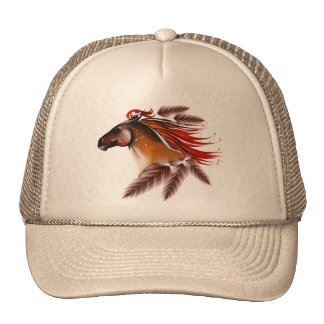 Horse and Red Feathers Hat