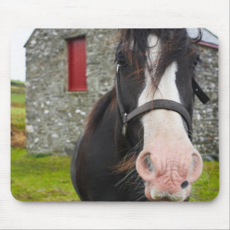 Horse and stone barn in rural England Mouse Mat
