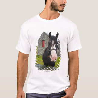 Horse and stone barn in rural England T-Shirt