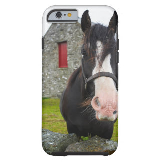 Horse and stone barn in rural England Tough iPhone 6 Case