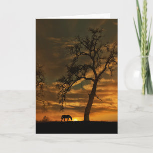 Horse and Sunset Equine Sympathy Card
