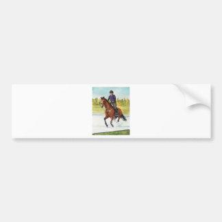 HORSE ART Cross-Country Thru Water Bumper Stickers