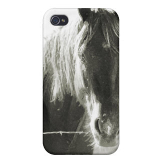 Horse At Fence iPhone 4/4S Cover