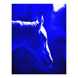Horse At Night - Horse In Moonlight 21.5 Cm X 28 Cm Flyer