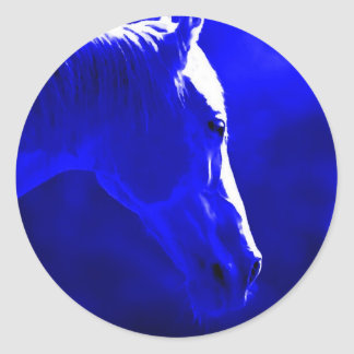 Horse At Night - Horse In Moonlight Round Stickers