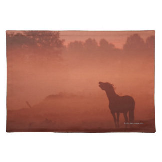 Horse at sunrise placemat