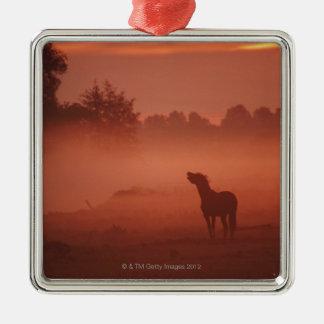 Horse at sunrise Silver-Colored square decoration