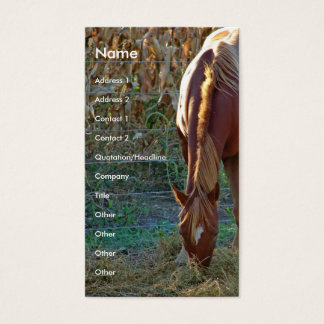 Horse at Sunset Business Card