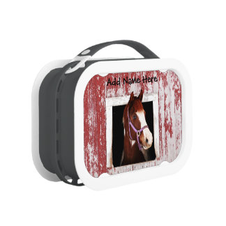 Horse At Window Lunch Boxes