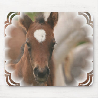 Horse Baby Mouse Pad